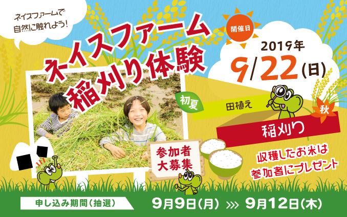 2019.9.22ネイスファーム稲刈り、開催決定!!
