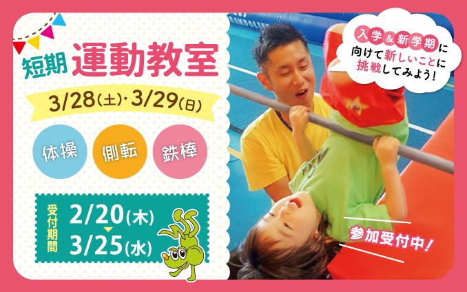 2020年3月28日(土)29日(日)春の短期運動教室開催!!